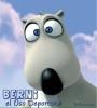 Conociendo a Berni , el OsoDeportista