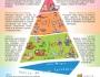 Pirámide de la nutrición y actividad física (EstrategiaNAOS)